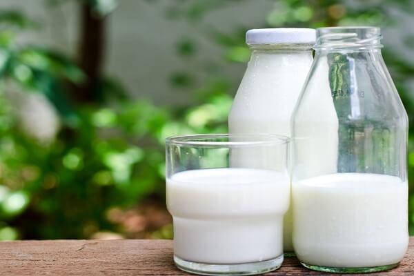 1 muỗng canh sữa tươi không đường - Cách làm salad rau trộn bắp cải với mayonnaise giảm cân