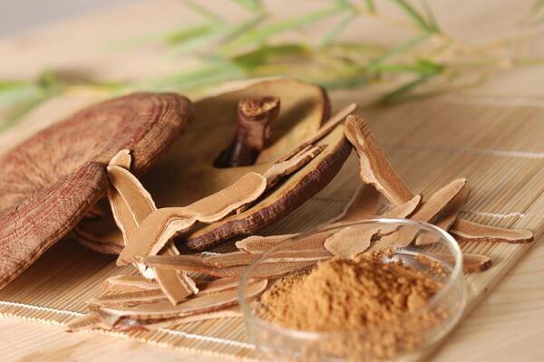 Tác dụng của nấm linh chi giúp giảm cân, chống béo phì