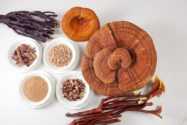 12 tác dụng của nấm linh chi, cách ngâm rượu nấm linh chi uống đẹp da và tốt cho sức khỏe