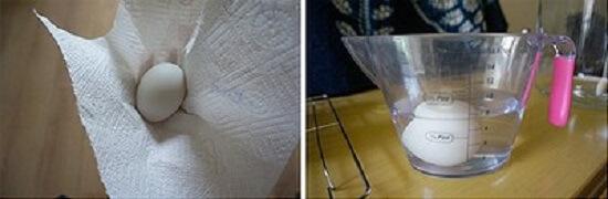 Bạn dùng khăn giấy lau lại trứng một lần nữa