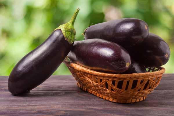 Nếu ăn nhiều cà tím cũng sẽ gây đầy bụng hoặc tiêu chảy