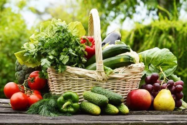Đa số tất cả các loại rau củ quả đều có thể nấu với thịt chim bồ câu