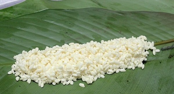 Gạo nếp được chọn làm bánh tro thường là gạo nếp ngon