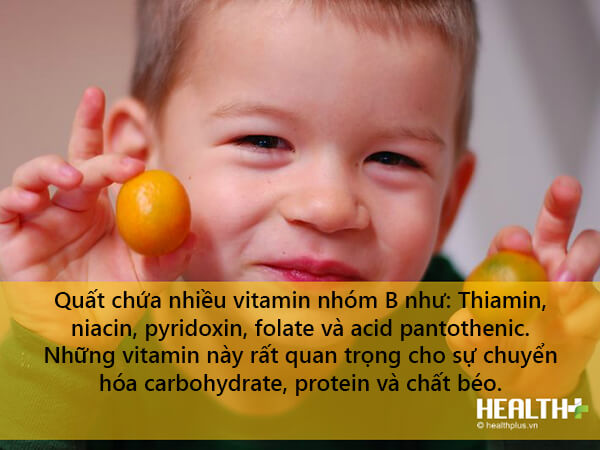 Trong quả quất có chứa chất xơ và hàm lượng vitamin lớn giúp thúc đẩy trao đổi chất