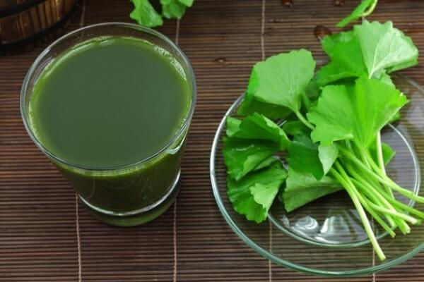 Rau má có tính mát, vị ngọt giúp thanh nhiệt, giải độc hiệu quả.