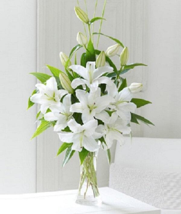 Hoa lyly thanh cao, quý phái