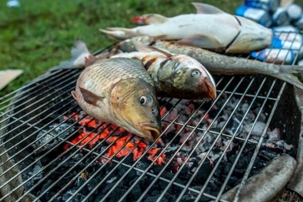 Nướng cá trên bếp than hoa cho đến khi cá chín vàng đều