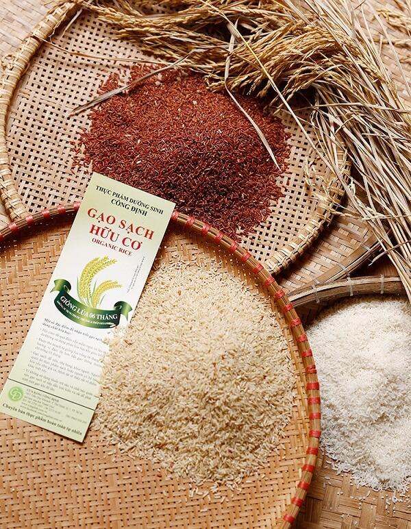 3 loại gạo phổ biến nhất trong thực dưỡng: gạo lứt đỏ, gạo lứt trắng và gạo chà dối.