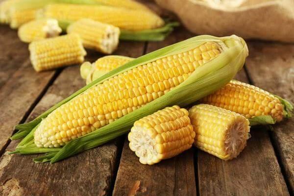 Sữa bắp (ngô) cũng là một loại sữa thực vật rất tốt cho sức khỏe