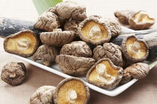 Nên sử dụng nấm khô để chà bông sử dụng được lâu.