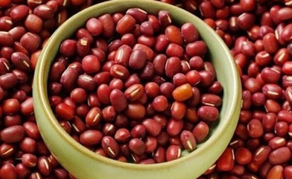 Giá trị dinh dưỡng của đậu đỏ rang