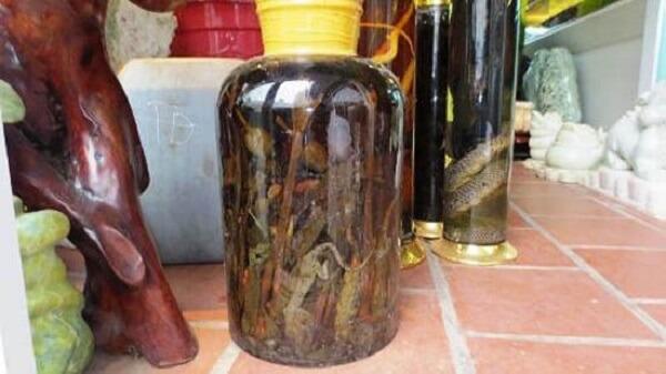 Cây anh túc ngâm rượu có tác dụng gì: thần dược hay độc dược 4