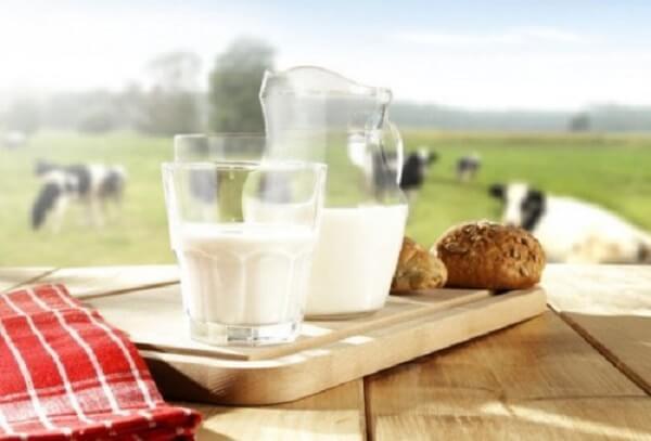 Sau khi bé đã đủ một năm tuổi, bạn có thể thay thế hoàn toàn sữa bột thành sữa bò tươi.