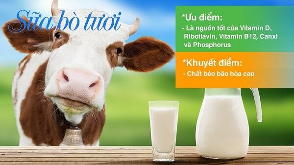Uống sữa bò tươi có thể gây thiếu máu do thiếu sắt.