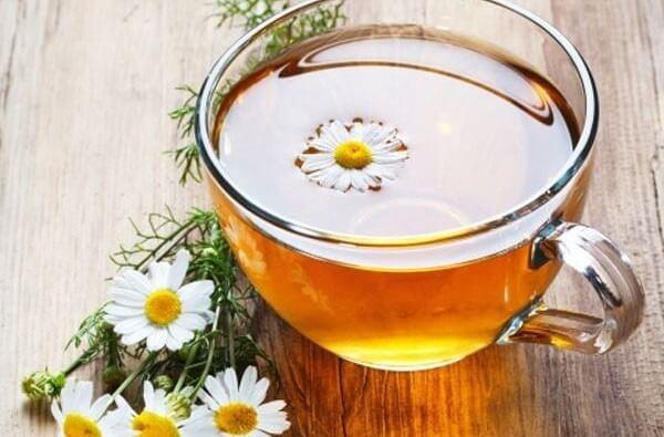 trong hoa cúc chứa apigenin – một chất có tác dụng ngăn ngừa tế bào ung thư lan rộng