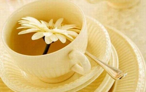 hoa cúc như một loại thảo dược giúp giảm viêm và nhiễm trùng