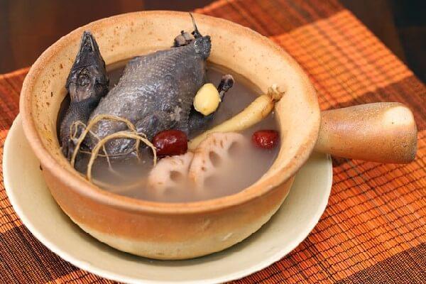 Gà hầm thuốc Bắc có xuất xứ từ ẩm thực Trung Hoa (Ảnh: Internet)