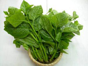 Các loại rau người bị đau dạ dày nên ăn