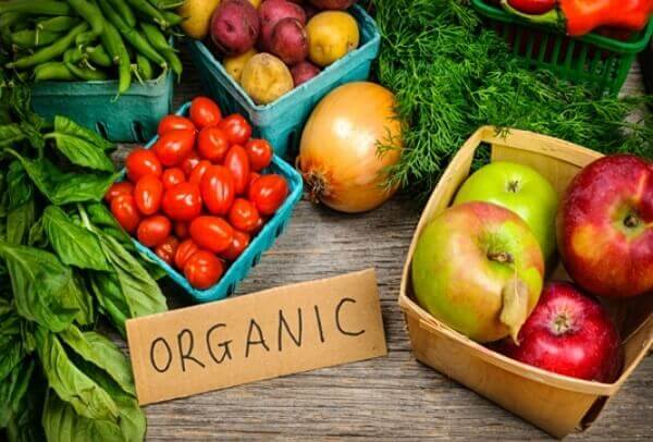Kiến thức về người bị trào ngược dạ dày nên ăn rau gì tốt cho dạ dày?