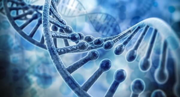 Di truyền - Bệnh trào ngược dạ dày có nguy hiểm ko, trào ngược dạ dày thực quản có nguy hiểm không