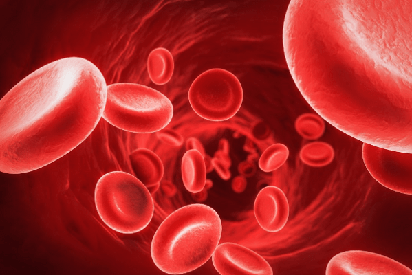 Chảy máu nội bộ
