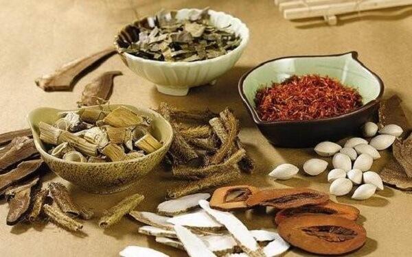 Các loại cây thuốc Nam chữa bệnh dạ dày hiệu quả dễ tìm