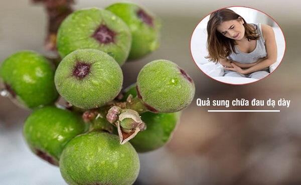 Dùng quả sung tươi chữa đau dạ dày