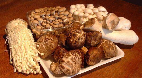 Các loại nấm - Cách nấu lẩu bò ngon nhất, lẩu bò nấu nấm miền Nam