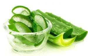 Nha đam chữa nhiều dưỡng chất giúp chữa đau dạ dày hiệu quả