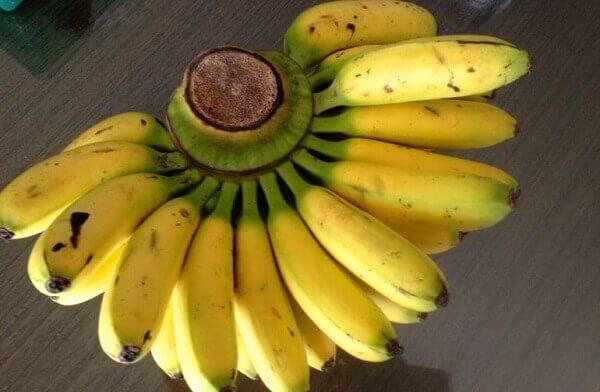 Chuối tiêu có tác dụng gì đối với sức khỏe