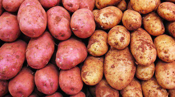 Khoai lang và khoai tây tốt cho trẻ bị đau dạ dày