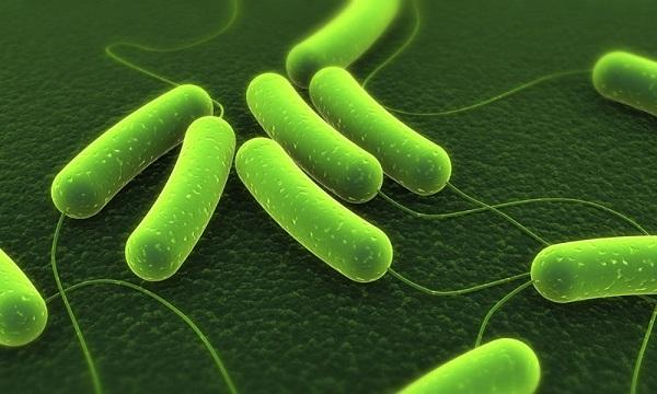 Loại bỏ vi khuẩn Hp khỏi dạ dày - Triệu chứng, dấu hiệu viêm loét dạ dày tá tràng