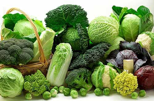 Bổ sung rau xanh để giảm đau vùng thượng vị