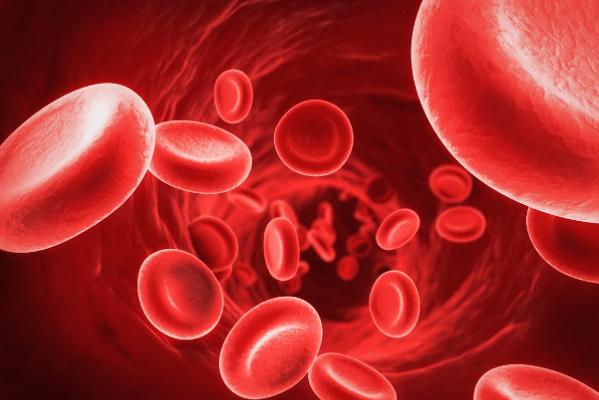 Xuất huyết đường tiêu hóa