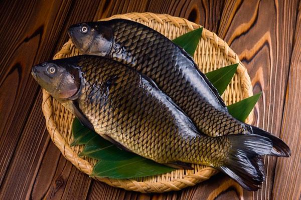 Cá diếc hầm - Bệnh đau dạ dày nên ăn gì tốt, đau bao tử kiêng ăn thực phẩm nào