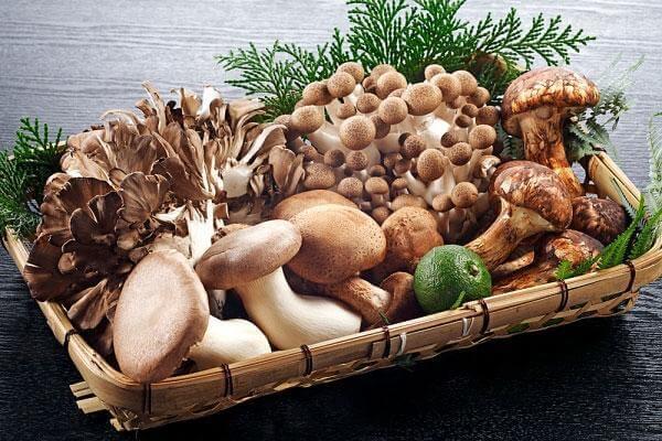 Các loại nấm - Bệnh đau dạ dày nên ăn gì tốt, đau bao tử kiêng ăn thực phẩm nào