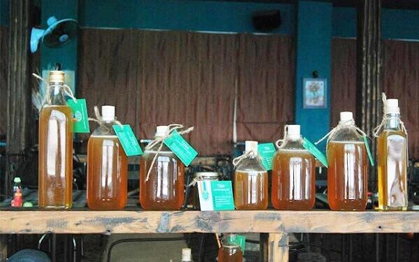 3 cách phân biệt mật ong rừng với mật ong nuôi đơn giản nhất