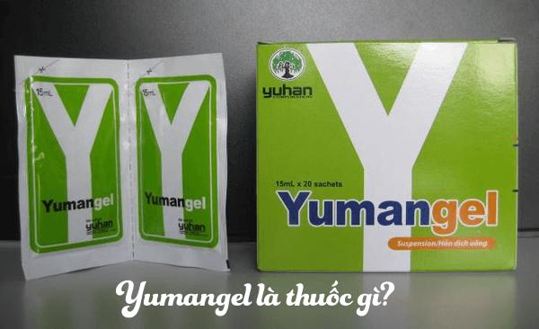 Thuốc chữa bệnh dạ dày chữ Y (thuốc Yumangel)