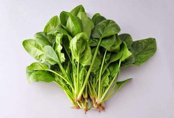Rau bina la rau gi tieng Anh, gọi là rau gì, rau mồng tơi, cải bó xôi, rau chân vịt