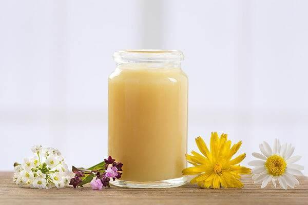 """Sữa ong chúa là dịch tiết ra từ ong thợ để làm thức ăn nuôi ấu trùng ong chúa. Trong khi ong thợ chỉ sống được khoảng 6 tuần thì ong chúa sống được tới 5 năm. Đây đang được coi là """"thần dược"""" giúp chống lão hóa, làm đẹp, tăng khả năng sinh lý và thụ thai ở phụ nữ. Ảnh: Internet."""