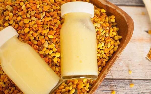 Ngày nay, việc sử dụng sữa ong chúa dạng viên nang mềm cũng đang dẫn trở nên quen thuộc hơn với rất nhiều người bởi tính tiện dụng, đặc biệt với những người không quen với mùi của sữa ong chúa tươi thì viên uống sữa ong chúa là giải pháp thay thế hoàn hảo.
