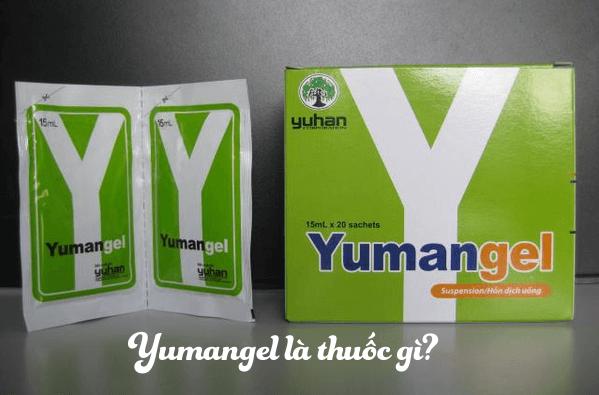 Toàn bộ về thuốc đau dạ dày chữ y (yumangel) - Liều lượng và cách dùng