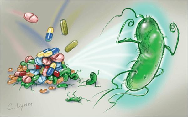 Phải làm gì khi có vi khuẩn Hp dương tính?