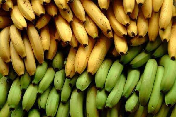 Chuối - Bệnh đau dạ dày nên ăn gì tốt, đau bao tử kiêng ăn thực phẩm nào
