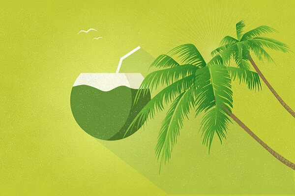 Bài thuốc chữa từ quả dừa tươi