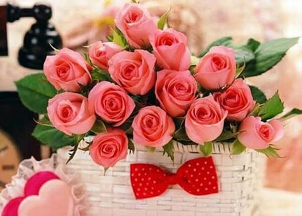 Hoa hồng lãng mạn - Hình ảnh những bó hoa sinh nhật đẹp nhất thế giới, độc đáo ý nghĩa