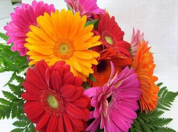 Các loại hoa chủ yêu để như hoa hồng, hoa lan, hoa hướng dương, hoa ly, hoa tulip,…