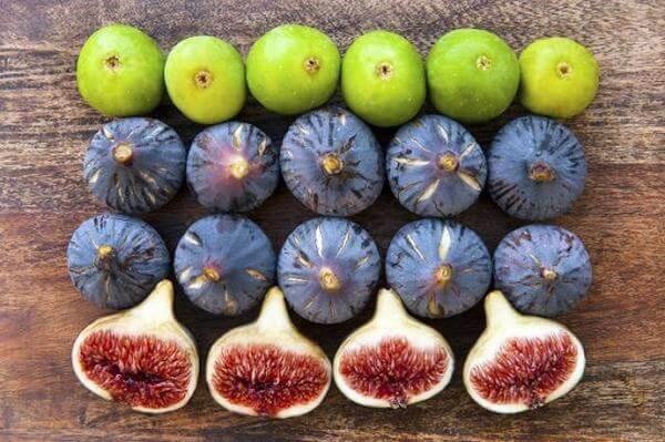 Lương Y Vũ Quốc Trung lên tiếng về thông tin ăn quả sung sẽ sung mãn mỗi ... Đặc biệt, không nên ăn quả sung có nổi nấm mốc hoặc quả có mùi chua, thối
