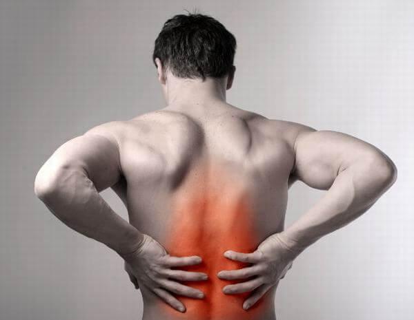 Uống hoặc xoa bóp rượu ngâm cây lược vàng làm giảm đau lưng, đau khớp. (ảnh: internet)