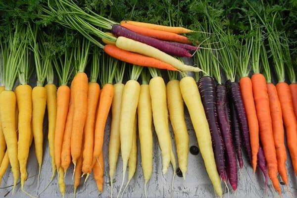 Tác dụng của cà rốt sống, luộc với da mặt, sức khỏe và giảm cân